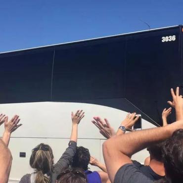 第一次到悉尼坐公交车必须知道的几个坑