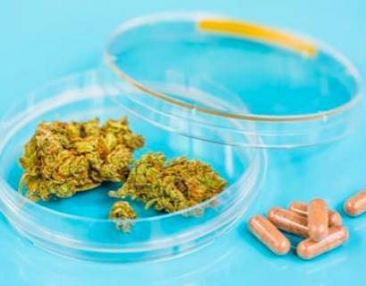 从今天开始爱尔兰将可以合法使用医用大麻