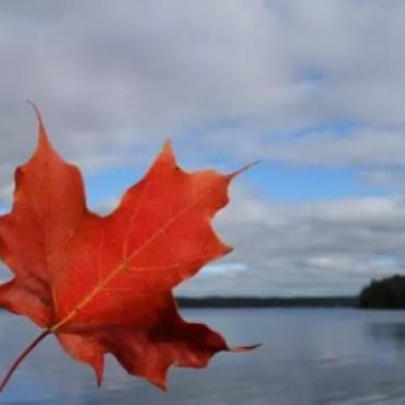 汇总|加拿大曼省商业移民最全攻略