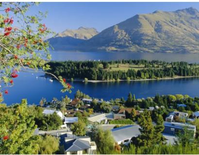 新西兰创业移民的经历