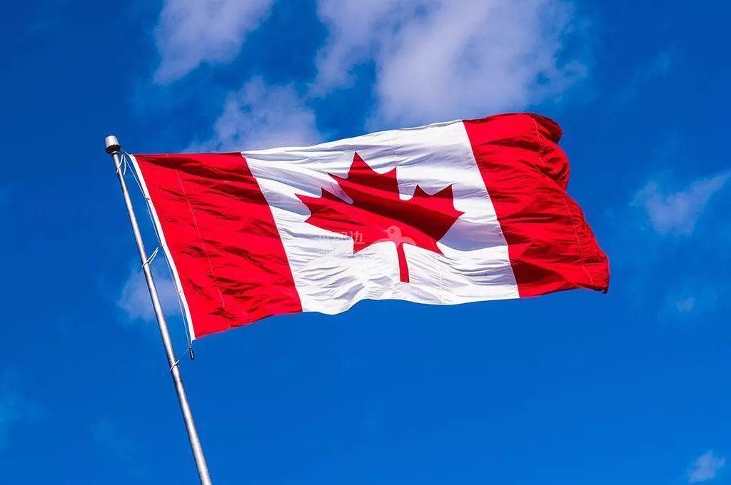 花13万移民加拿大全打水漂,钱没了,身份也没拿到,不要再受骗了