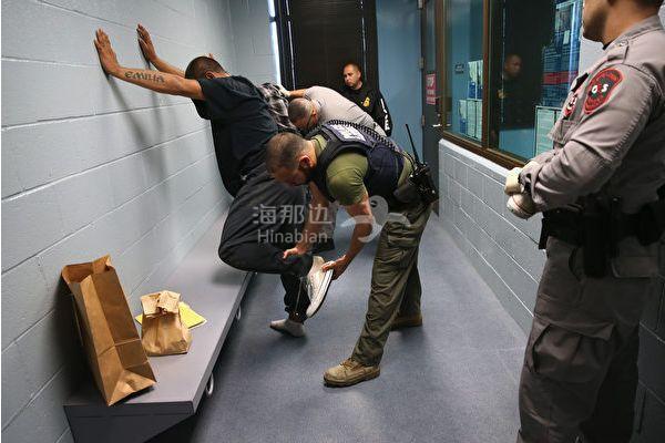 ICE突袭圣地亚哥, 抓了115人, 30天内在加州抓了559人