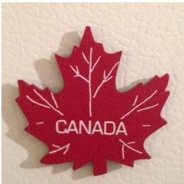 2016年加拿大联邦技术移民解析