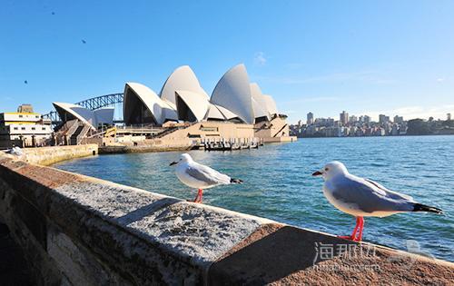 你真的在过澳洲生活么?什么才算地道的澳洲生活方式?