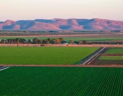 澳大利亚行业优势报告(六): 农业经济