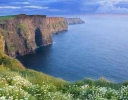 看完爱尔兰的妇幼福利,我在怀疑人生
