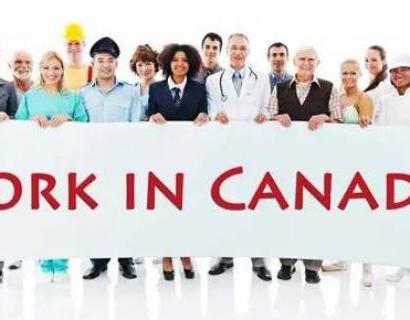2017年加拿大就业率最高的10大城市