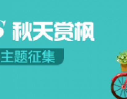 【主题征集】华人的一天:随手拍,春天踏青VS秋天赏枫
