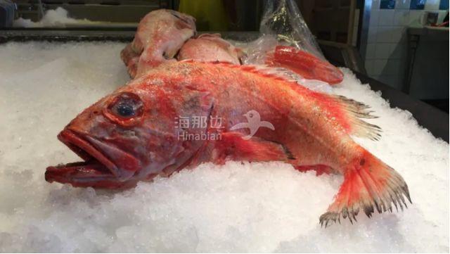 当心!大温1/4海鲜都贴错标签 其中这种鱼错最多