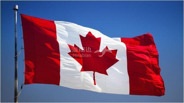 单纯善良的加拿大人,你遇到过多少?