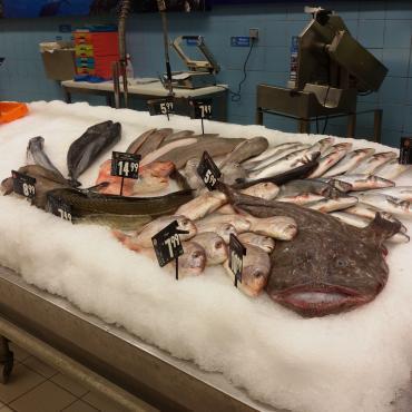 【随手拍】今天我来晒晒波尔图超市里面的海鲜哦,大家看这个价格还行吗?【胆小者...