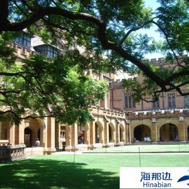 实拍:悉尼大学独特迷人的校园风景(组图)
