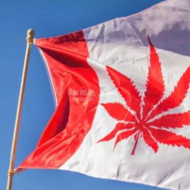2018年加拿大政坛最具影响力的5件事和3大丑闻