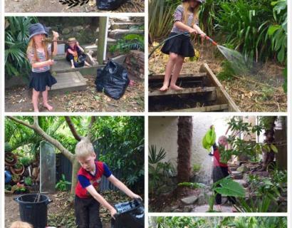 【婆在新西兰】哈哈~今天后花园里的小帮手...