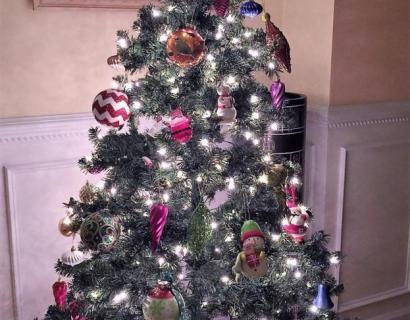 #圣诞随拍# 妈妈是大厨(4)--三涵妈妈的凡人小事儿