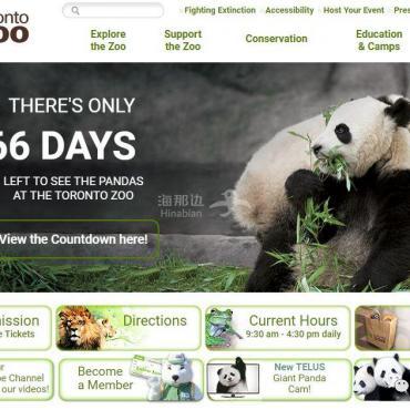 从多伦多到卡尔加里,国宝大熊猫旅居加拿大的趣闻