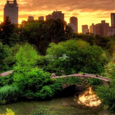 纽约中央公园的黄昏