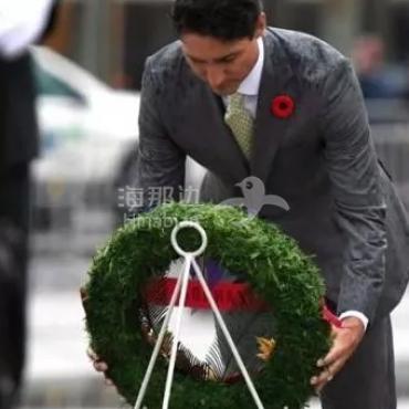 今年的11月11日,是加拿大的第一百个国殇日